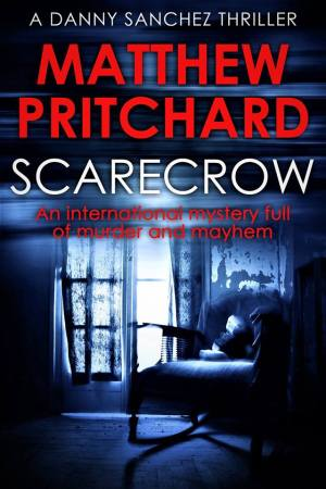 Scarecrow cover